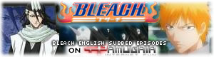 Bleach Episodes English Subbed on Tamugaia